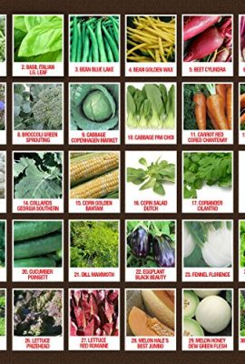 100-Organic-Heirloom-Seeds-60-Varieties-Non-GMO-Vegetable-Fruits-Herbs-Grown-in-USA-for-Quality-Assurance-This-Vegetable-Garden-Survival-Seeds-Pack-Comes-With-A-100-Lifetime-Guarantee-0-0
