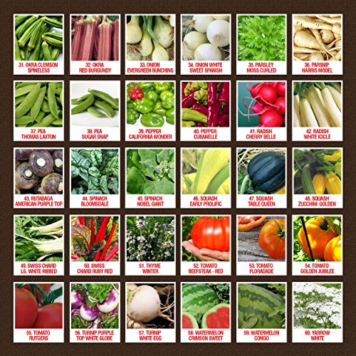 100-Organic-Heirloom-Seeds-60-Varieties-Non-GMO-Vegetable-Fruits-Herbs-Grown-in-USA-for-Quality-Assurance-This-Vegetable-Garden-Survival-Seeds-Pack-Comes-With-A-100-Lifetime-Guarantee-0-1