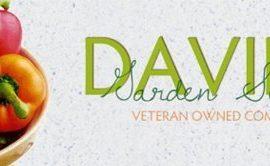 Cucumber-Armenian-Dark-Green-Slicing-D124CUC-Green-50-Organic-Seeds-by-Davids-Garden-Seeds-0-3