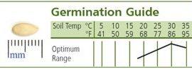 Cucumber-Armenian-Dark-Green-Slicing-D124CUC-Green-50-Organic-Seeds-by-Davids-Garden-Seeds-0-4