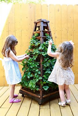 Earth-Tower-Vertical-Garden-4-sided-Wooden-Planter-on-Wheels-0-4