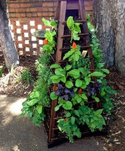 Earth-Tower-Vertical-Garden-4-sided-Wooden-Planter-on-Wheels-0-6