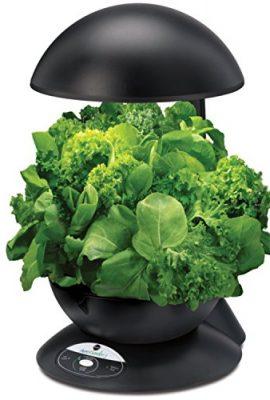 Miracle-Gro-AeroGarden-Heirloom-Salad-Greens-Seed-Pod-Kit-0-3