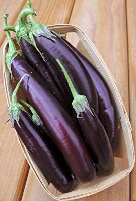 Eggplant-Organic-Purple-Long-Eggplant-Italian-Heirloom-300-Vegetable-Seeds-0-1
