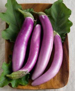 Eggplant-Orient-Charm-D2201PLY-Purple-25-Hybrid-Seeds-by-Davids-Garden-Seeds-0