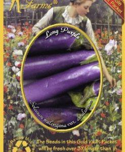 Everwilde-Farms-Long-Purple-Eggplant-Seeds-Gold-Vault-0-0