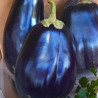 Seeds-of-Change-Certified-Organic-Eggplant-0-1