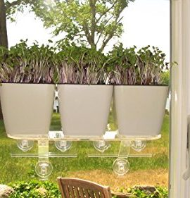 Self-Watering-Planter-5-Water-Level-Indicator-Fiber-Soil-Foolproof-Indoor-Garden-and-Happy-Plants-Aquaphoric-Planter-Pot-for-All-House-Plants-Herbs-African-Violets-Succulents-Its-Easy-0-3