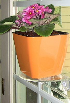 Self-Watering-Planter-5-Water-Level-Indicator-Fiber-Soil-Foolproof-Indoor-Garden-and-Happy-Plants-Aquaphoric-Planter-Pot-for-All-House-Plants-Herbs-African-Violets-Succulents-Its-Easy-0-5