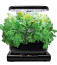 Miracle-Gro-AeroGarden-Harvest-with-Gourmet-Herb-Seed-Pod-Kit-Black-0-1