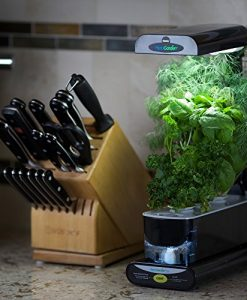 Miracle-Gro-AeroGarden-Sprout-with-Gourmet-Herb-Seed-Pod-Kit-Black-0-4