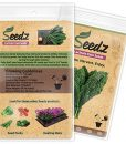 CERTIFIED-ORGANIC-SEEDS-Approx-550-Lacinato-Kale-Heirloom-Seeds-Kale-Collection-Non-GMO-Non-Hybrid-USA-0-2