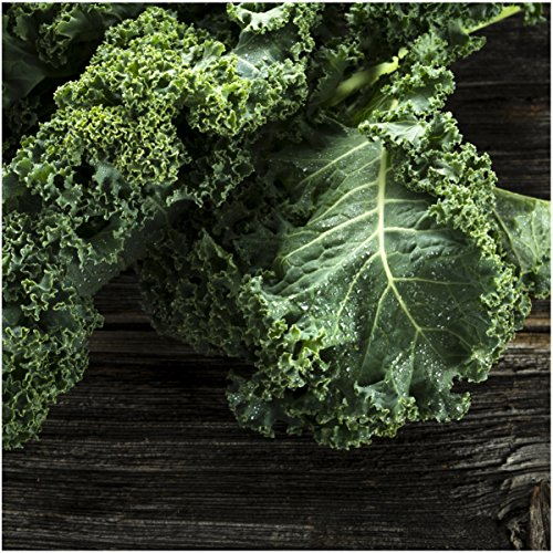 Planting Kale In Pots: How To Grow Kale In Containers